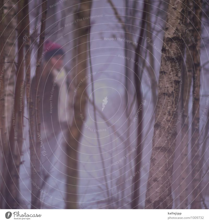 birkenwald Kind Mädchen 1 Mensch 8-13 Jahre Kindheit stehen Birke Wald Nebel rosa Schneefall weiß Mütze Schal Jacke Winter Märchen Farbfoto Außenaufnahme Licht