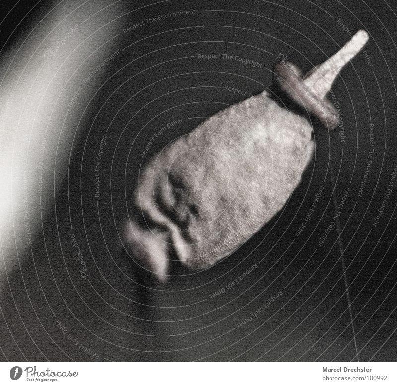 Mikromakro Natur weiß Pflanze schwarz Berge u. Gebirge grau klein Filmmaterial Samen Mikrofon arrangiert winzig Sporen mikroskopisch