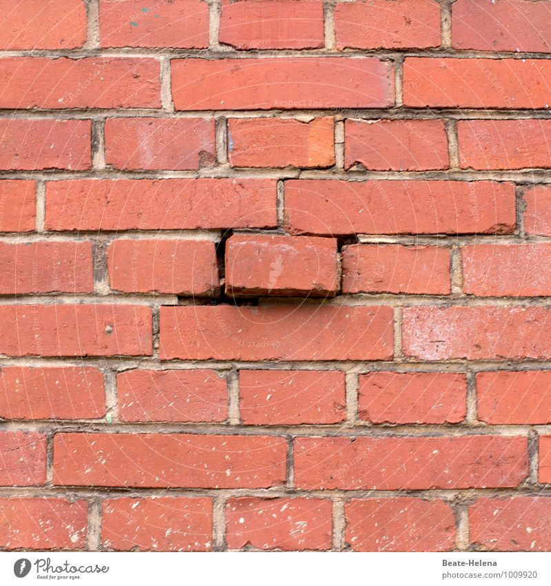 Another brick in the wall Häusliches Leben Hausbau Renovieren Bauwerk Mauer Wand Backstein wählen Bewegung festhalten eckig kaputt rot Stress Ende
