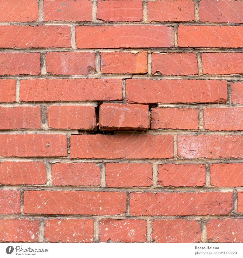 Another brick in the wall rot Haus Wand Bewegung Mauer Häusliches Leben kaputt Symbole & Metaphern festhalten Bauwerk verfallen Ende Verfall Backstein Stress