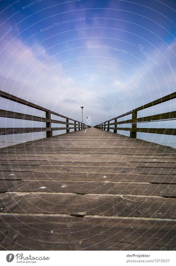 Ist das der berühmte Holzweg? Ferien & Urlaub & Reisen Tourismus Ausflug Abenteuer Freiheit Meer Winterurlaub Umwelt Landschaft Schönes Wetter Küste Ostsee