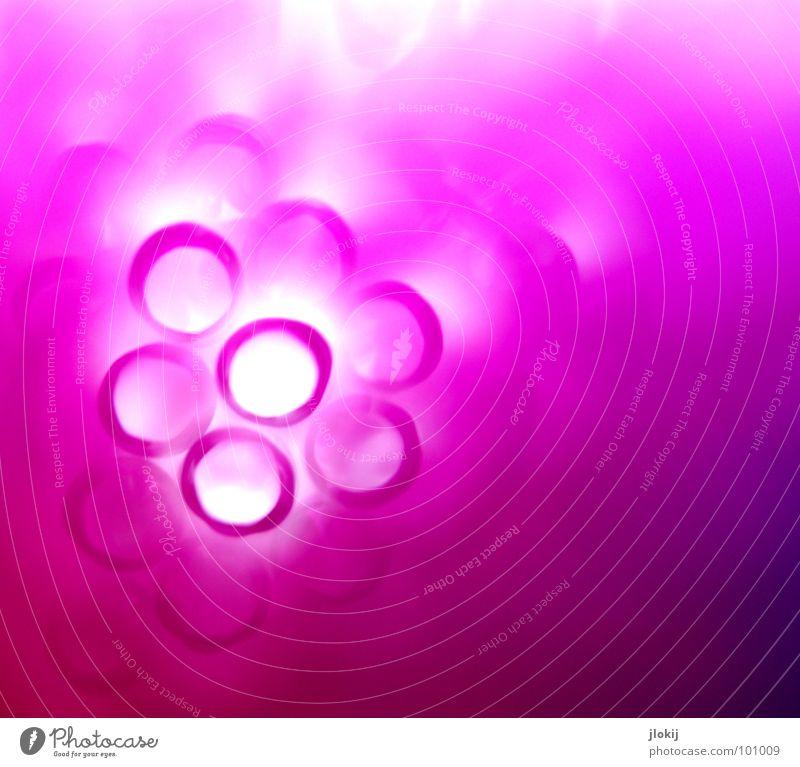Durchblick V Farbe Blume Spielen Lampe rosa fantastisch rund Getränk chaotisch Loch bizarr durcheinander Tunnel Cocktail Durst Mischung