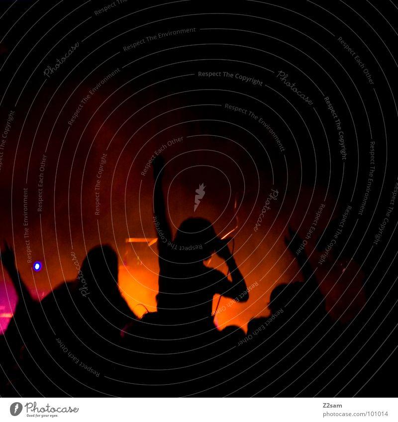 on stage II Bühne Show Spielen Musik Sänger Nebel Mikrofon Dach Konstruktion Sonnenuntergang See Garching München Sommer Mann Schnur Musikinstrument Himmel