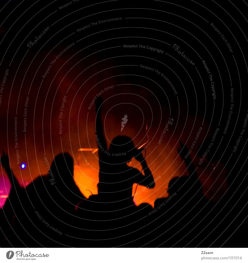 on stage II Mensch Mann Natur Himmel Sommer Farbe Spielen Musik See Nebel Dach München Show Schnur Rockmusik