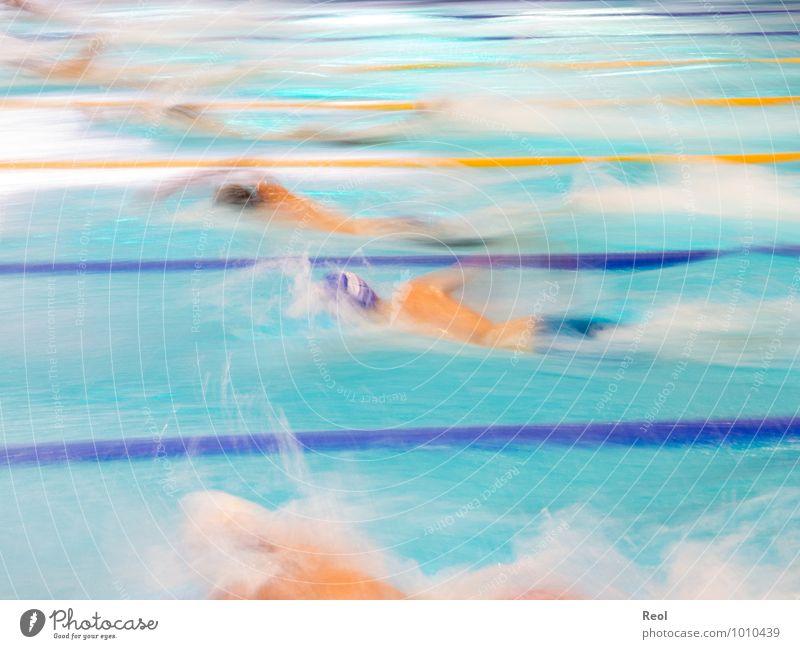Schwimmen DLRG Rettungsschwimmer Kraulstil schwimmen Schwimmsport Schwimmsportler Mensch 6 Menschengruppe 13-18 Jahre Kind Jugendliche Schwimmbad sportlich