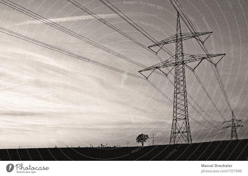 Frei Strom für Alle! Elektrizität weiß Landweg Feld Schwarzweißfoto Strommast schwar Sepia Körnung Energiewirtschaft Kabel Mäste Leitung rau