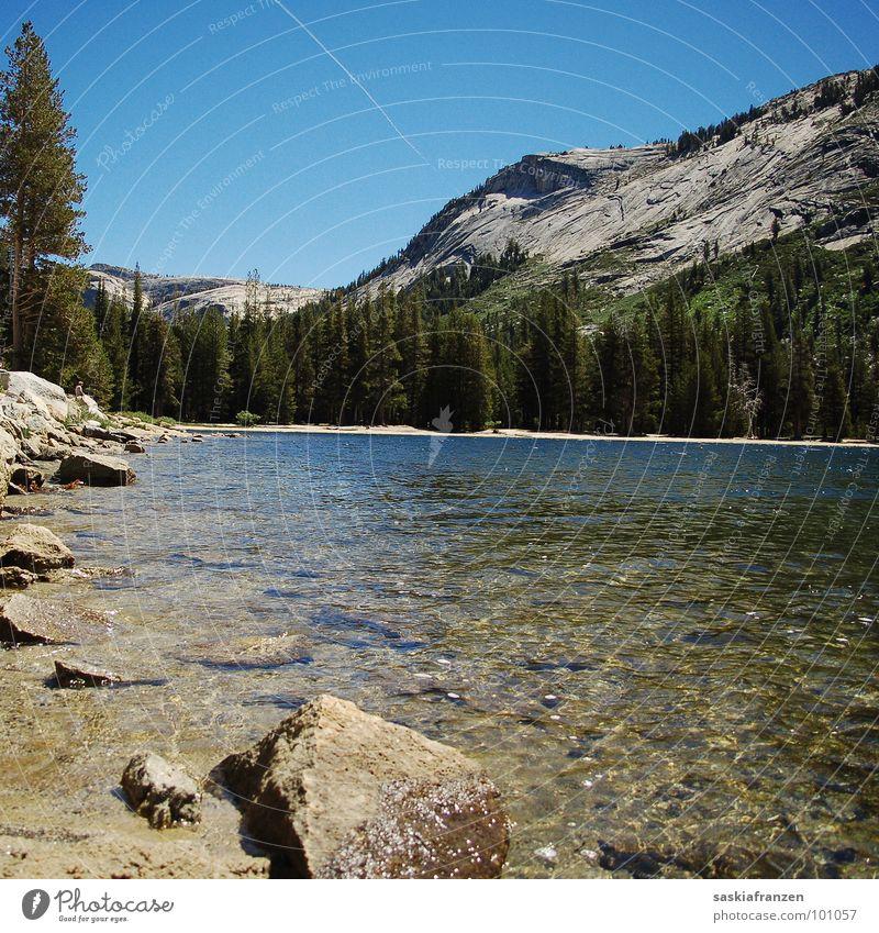 Yosemite II See Baum grün Flugzeug Gewässer träumen unberührt USA Klarheit Berge u. Gebirge Stein Felsen Wasser Küste Himmel blau Natur Landschaft Leben