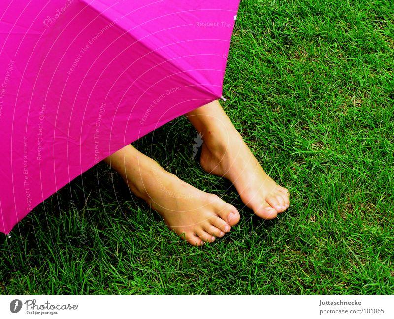 Verborgen Mensch grün Gras Garten Fuß Regen rosa Sicherheit Regenschirm geheimnisvoll verstecken Versteck