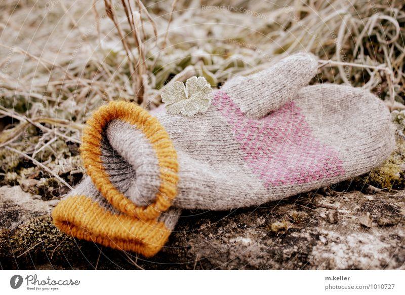 Frost Winter Hand Finger Natur Eis Bekleidung Handschuh frieren gehen Wärme weich kalt Farbfoto Gedeckte Farben