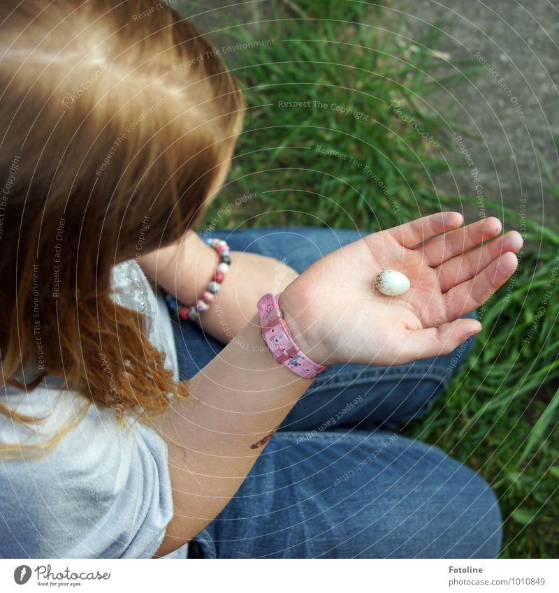 Nestflüchtling Mensch feminin Kind Mädchen Kindheit Haut Kopf Haare & Frisuren Arme Hand Finger Umwelt Natur Pflanze Tier Schönes Wetter Gras Garten klein nah