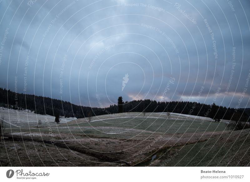 Alles hat seine Zeit Ferien & Urlaub & Reisen Natur Landschaft Wolken Winter schlechtes Wetter Eis Frost Schnee Baum Feld Hügel Schwarzwald Dorf dunkel blau