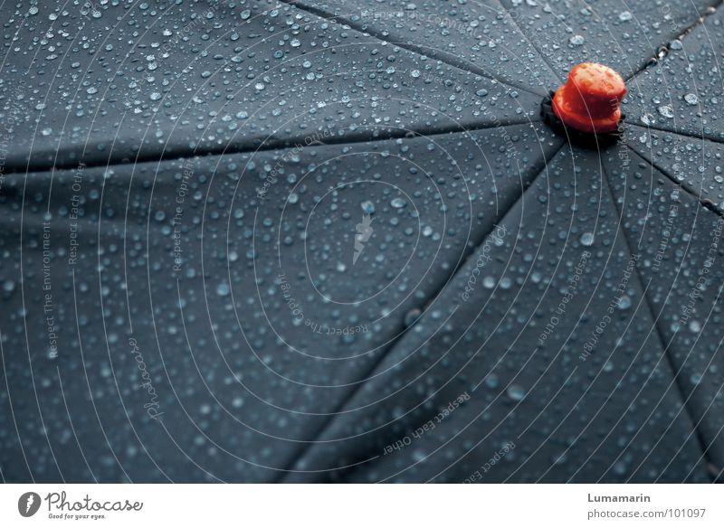 bad weather buzzer Wasser rot grau Regen Wetter nass Wassertropfen Stern (Symbol) Bekleidung Stoff stoppen Mitte Regenschirm Stengel tief Gewitter