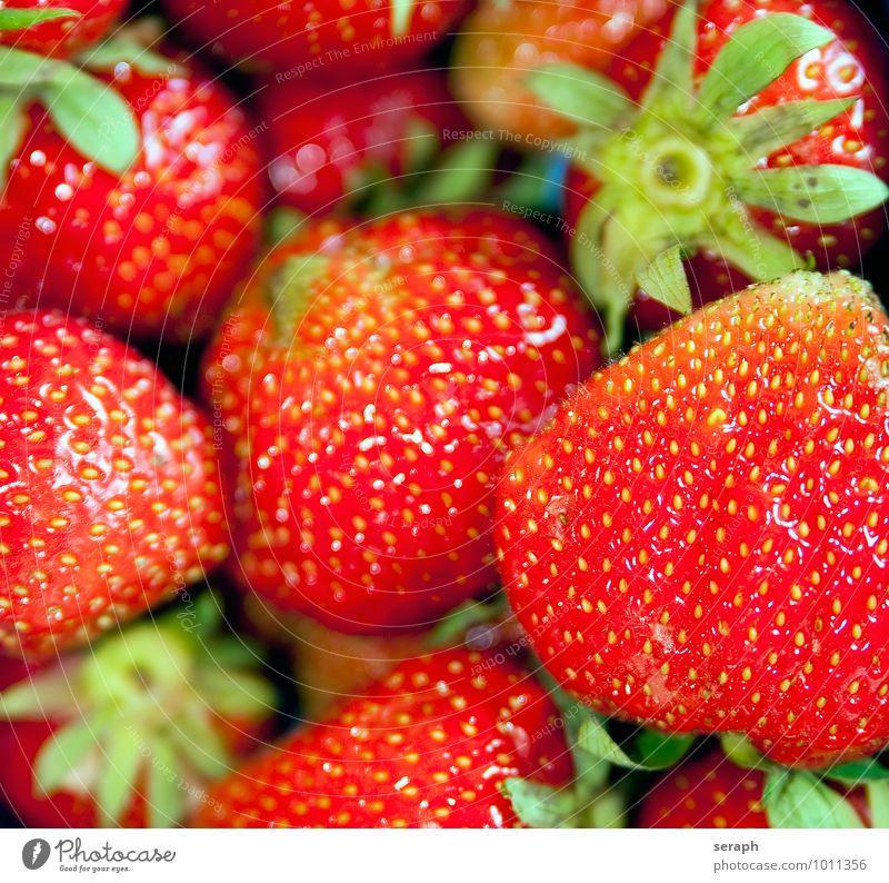 Erdbeeren Gesunde Ernährung Gesundheit Hintergrundbild Lebensmittel Foodfotografie Frucht frisch süß Jahreszeiten lecker Erfrischung Beeren Diät Dessert saftig