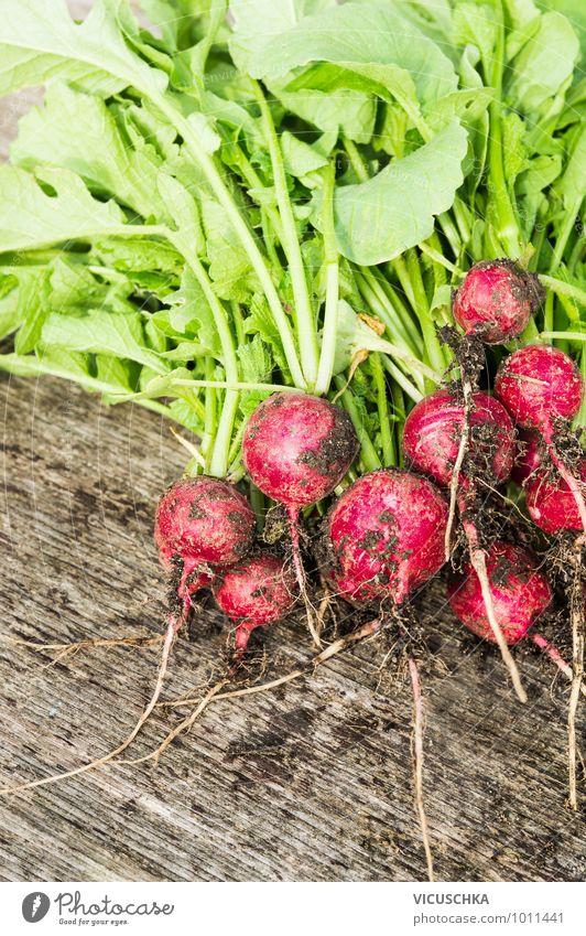 Ersten Radieschen Bündel in Garten ernten. Natur grün Sommer rot Blatt Gesunde Ernährung Frühling Stil Essen Lebensmittel braun Foodfotografie Erde Design