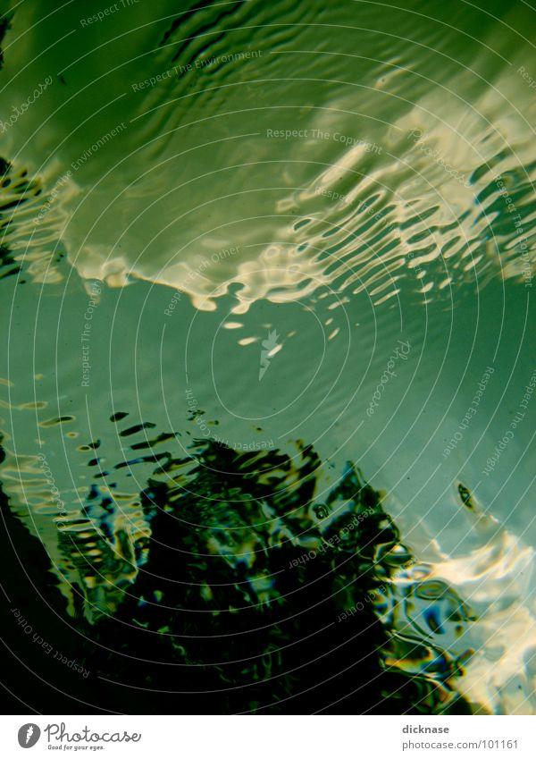 """""""STEP INTO LIQUID"""" Meister Schwimmbad Sommer Wolken Baum Wellen madoismus step into liquid force Wasser wellchen von unterwasser Unterwasseraufnahme underwater"""