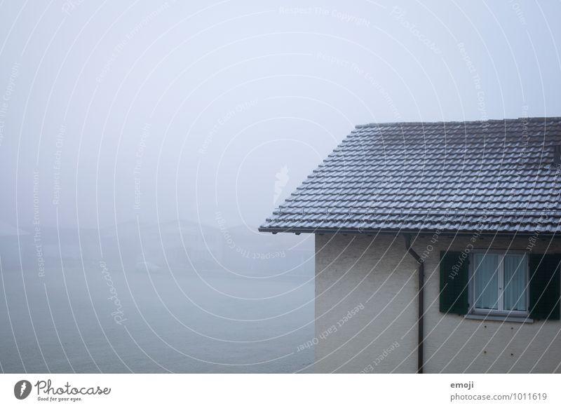 das tägliche Grau Umwelt Natur Winter schlechtes Wetter Nebel Eis Frost Schnee Haus Einfamilienhaus Mauer Wand Fassade Fenster kalt grau trist Farbfoto