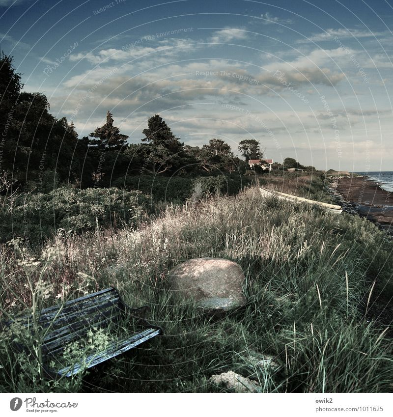 Nordbank Himmel Natur Ferien & Urlaub & Reisen alt Pflanze Wasser Baum Landschaft Wolken Haus Ferne Umwelt Gras Küste Stein Horizont