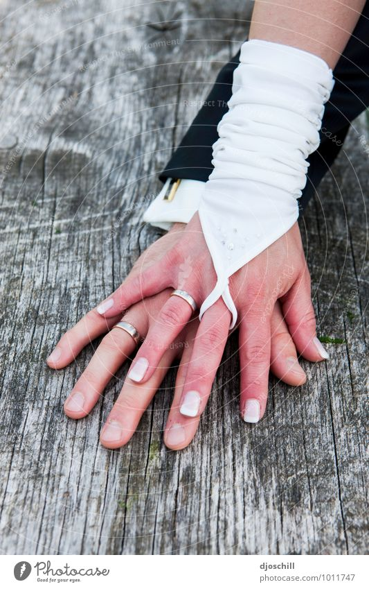 Hand in Hand Stil Design Freude Glück Hochzeit Schleife Holz Metall Zeichen Herz Liebe Zusammensein gold silber Zukunft Zusammenhalt Farbfoto Textfreiraum links