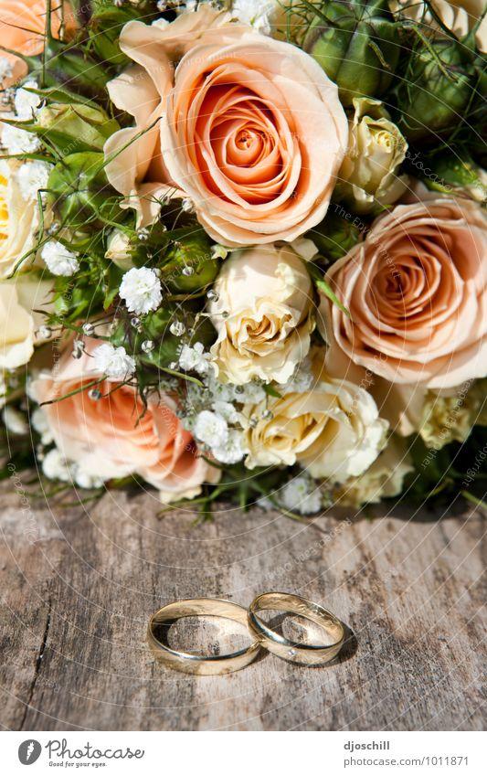Marryme schön Freude Gefühle Liebe natürlich Glück Holz Religion & Glaube Metall Design Gold Zeichen Hoffnung Hochzeit Schmuck Ring