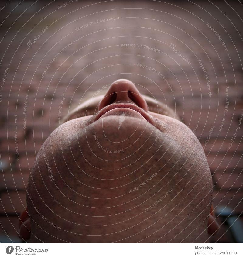 Ein schönes Kinn kann auch entzücken! Mensch maskulin Junger Mann Jugendliche Ohr Nase Mund Bart Bartstoppel Wimpern 1 18-30 Jahre Erwachsene Mauer Backstein