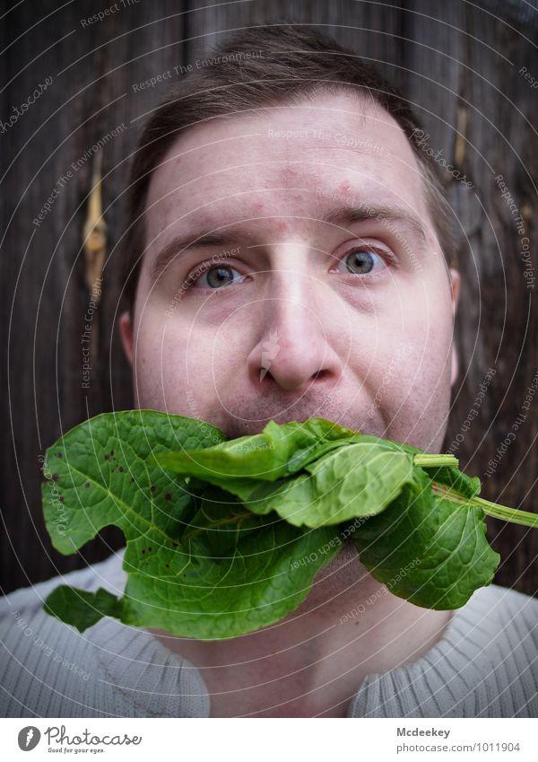 Vegetarisch für Fortgeschrittene Mensch Jugendliche Pflanze grün weiß Junger Mann 18-30 Jahre schwarz Erwachsene Gesicht Auge Gras grau Holz Gesundheit Essen