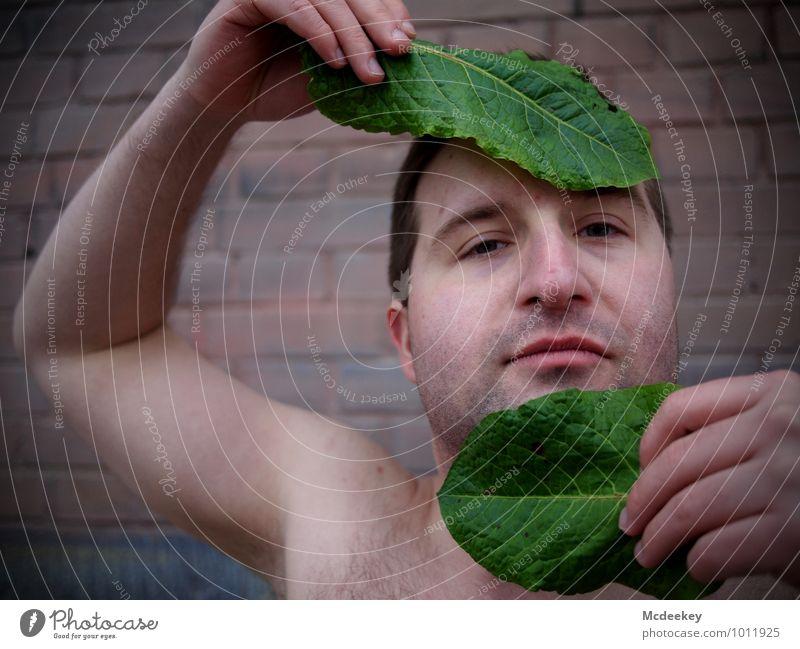 Mit Essen spielt man nicht! Mensch Jugendliche Pflanze grün Hand Blatt Erotik Junger Mann 18-30 Jahre Gesunde Ernährung schwarz Erwachsene Gesicht Auge Mauer