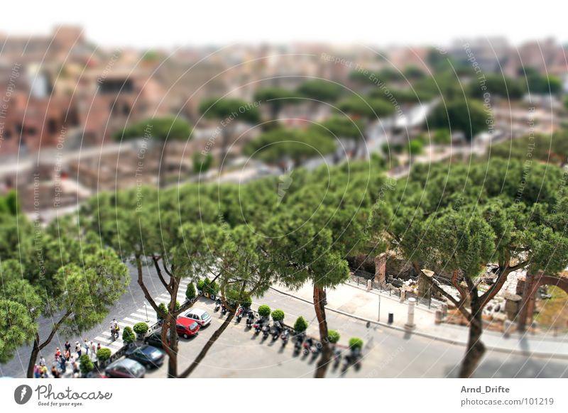 Mini-Rom2 Mensch grün Stadt braun klein Italien Denkmal Ruine Wahrzeichen Surrealismus Tourist Rom Miniatur Tilt-Shift