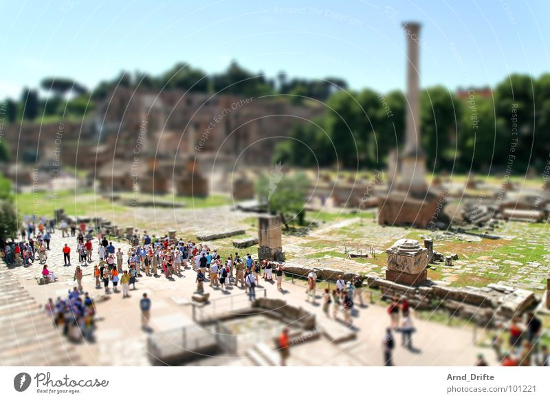 Mini-Forum-Romanum2 Mensch grün braun klein Denkmal Ruine Wahrzeichen Surrealismus Tourist Miniatur Italien Tilt-Shift