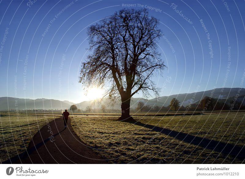 Tagesanbruch Mensch Himmel Natur Erholung Landschaft Umwelt Erwachsene Berge u. Gebirge Herbst Bewegung Wiese Wege & Pfade Sport Deutschland maskulin