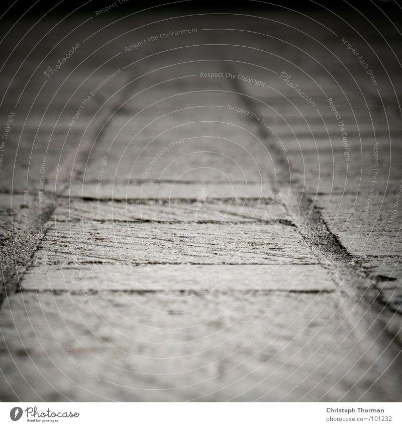 Ein steiniger Weg grau Wege & Pfade Bodenbelag Richtung Tiefenschärfe Pflastersteine Fuge Makroaufnahme geradeaus Fluchtpunkt wegweisend