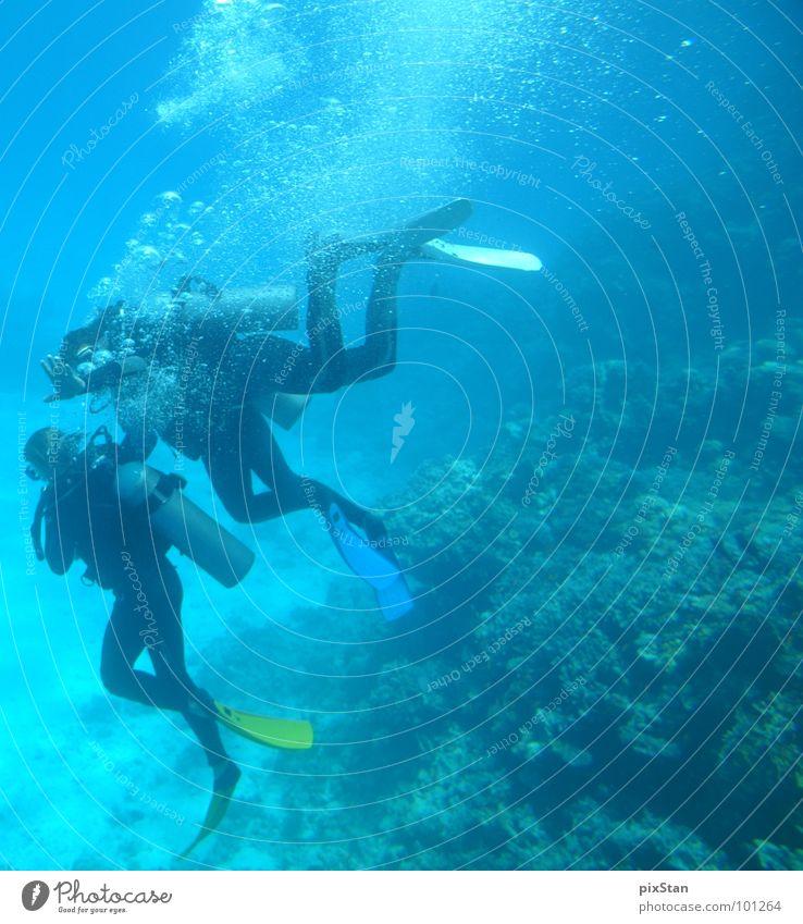 Deep Diving Meer Taucher tauchen Luftblase Korallen Wassersport blau Schwimmhilfe Fisch diving