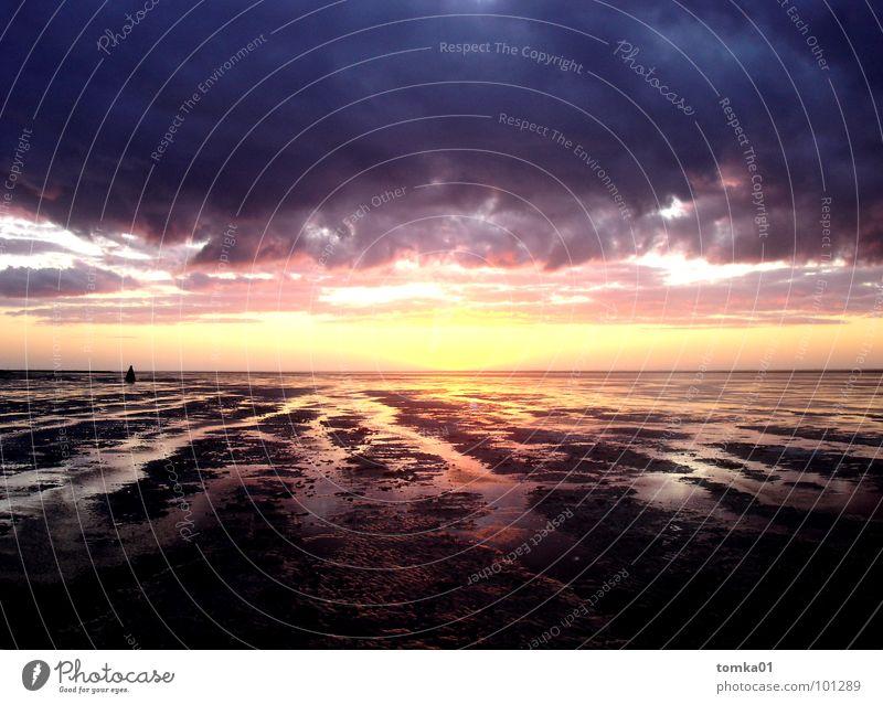 Los Horizontos schön Wolken Meer Ebbe Pfütze Priel Furche Wattwürmer Sonnenuntergang Schlamm Moor Europa Wattwandern Reflexion & Spiegelung Unendlichkeit