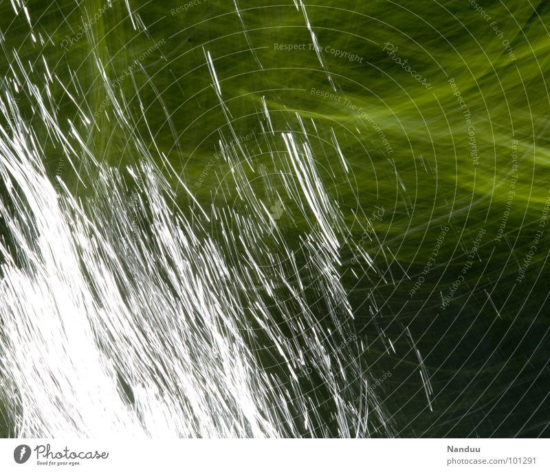 Lichtmalerei grün glänzend weiß abstrakt Hintergrundbild Linie Gemälde Bach Gezwitscher Sonnenlicht Langzeitbelichtung Blatt Strömung Sommer Fluss Lichtspritzer