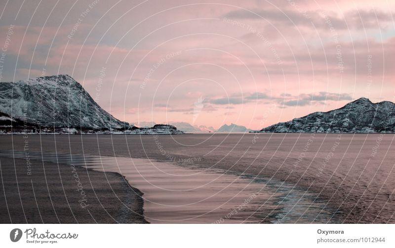 Am Trollfjord Erholung ruhig Ferien & Urlaub & Reisen Abenteuer Ferne Freiheit Kreuzfahrt Winter Schnee Winterurlaub Landschaft Wasser Himmel Wolken Horizont