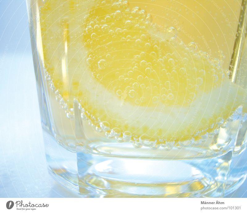 Für euch 1 Zitrone Ginger Ale prickeln trinken Sommer Erfrischung Getränk kalt Gastronomie Frucht Wasser erfrischen Durst Glas Sonne Coolness fresh