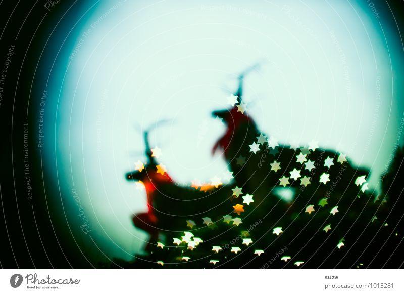 MondscheinHelden Lifestyle Stil Design Dekoration & Verzierung Nachtleben Feste & Feiern Weihnachten & Advent Zeichen leuchten außergewöhnlich fantastisch