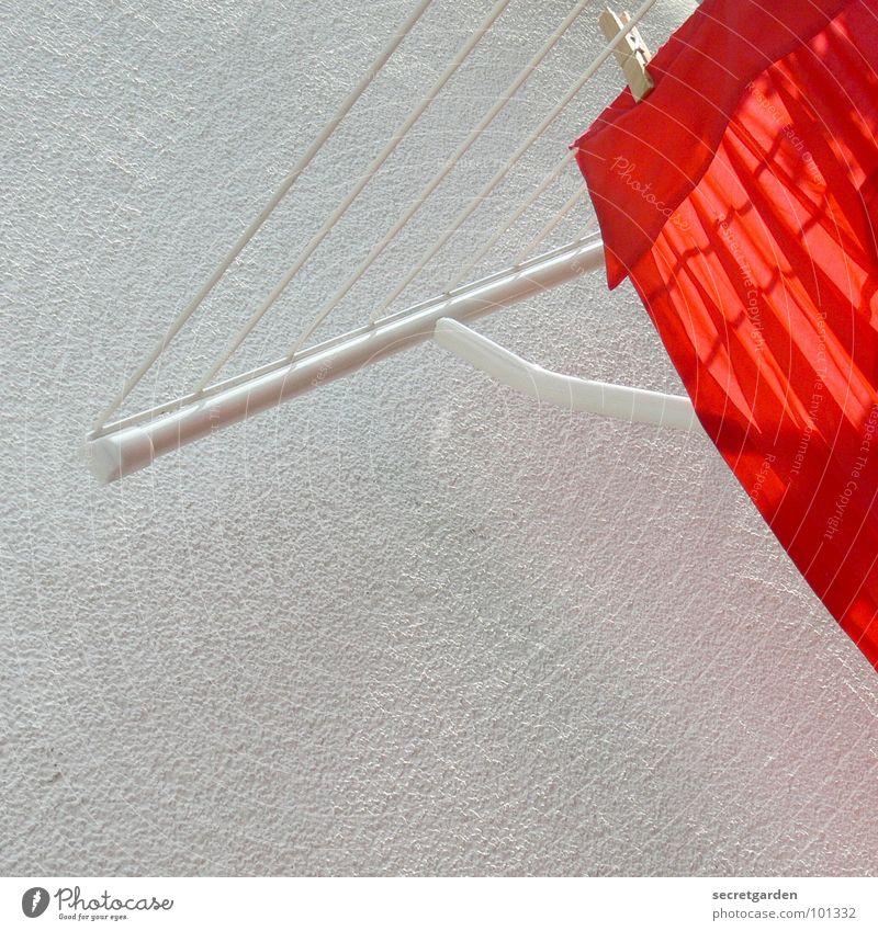 schneeweiss und rosenrot Hemd Wand Wäscheklammern Holz Sommer Sauberkeit gereinigt sommerlich Frühjahrsputz Haushalt Balkon Bekleidung trocknen trocken hell