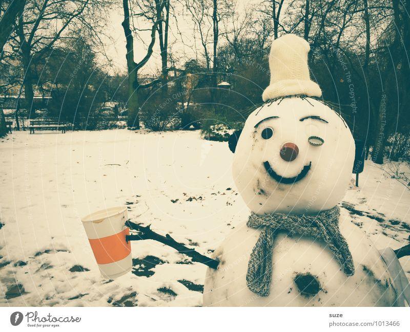 Schneekönig Becher Freude Freizeit & Hobby Winter Kindheit Umwelt Natur Klima Klimawandel Eis Frost Park Schal Mütze kalt lustig weiß Fröhlichkeit Coolness