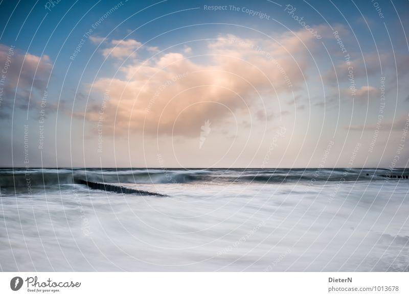 In Bewegung Umwelt Natur Landschaft Urelemente Wasser Himmel Wolken Wetter Schönes Wetter Wind Sturm Nebel Wellen Küste Strand Ostsee Meer blau gelb schwarz