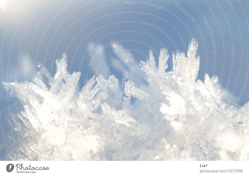 Eiskristalle II blau weiß Winter kalt Schnee Schneefall Speiseeis Frost gefroren Schneekristall Ernährung
