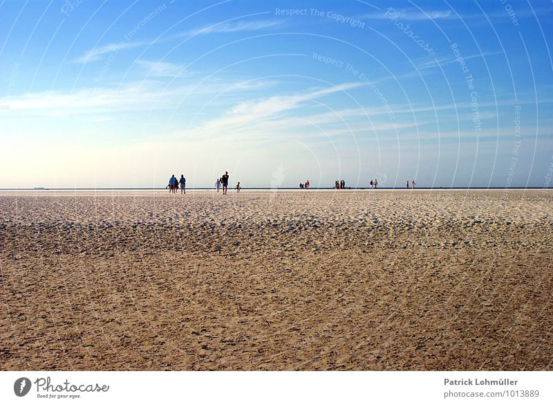 Strandwanderer Langeoog Mensch Erwachsene Körper Menschengruppe Natur Landschaft Sand Himmel Sommer Schönes Wetter Küste Nordsee Insel Ostfriesische Inseln