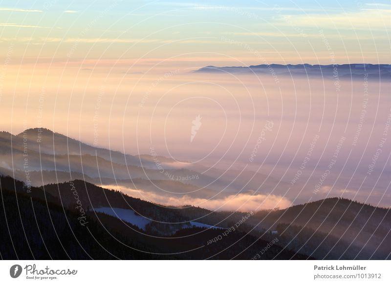 Tagesende auf dem Schauinsland Natur Landschaft Himmel Sonnenaufgang Sonnenuntergang Winter Schönes Wetter Nebel Wald Berge u. Gebirge Gipfel Kanton Freiburg