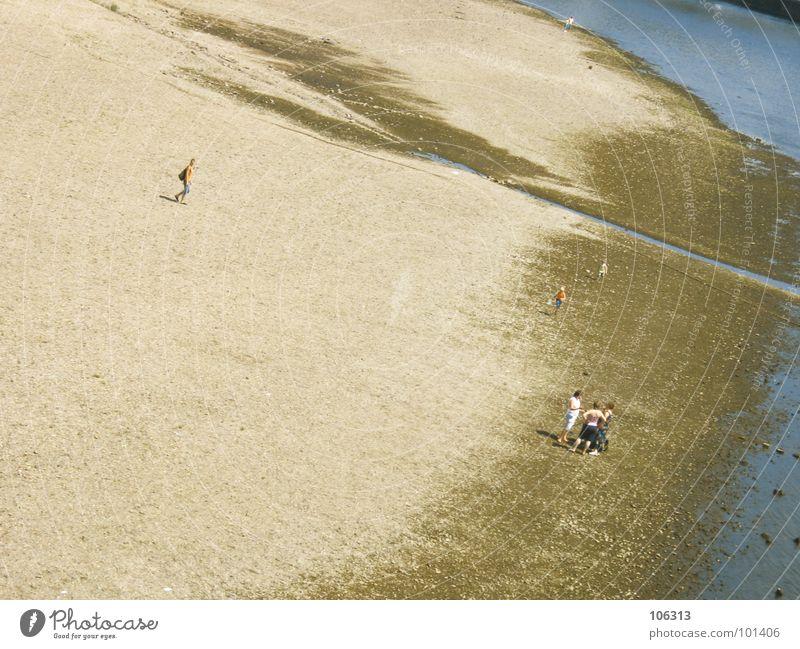 BEACH PARTY HUMANS Strand Küste Meer See Suche Kinderwagen schieben Zerreißen drücken Spielen Spaziergang Mann Einsamkeit abgelegen Menschenleer Einsiedler