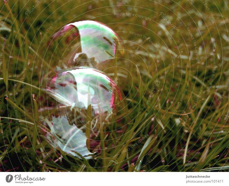 Double Bubble blau rot Sommer Freude gelb Farbe Spielen Garten glänzend Glas Kugel Blase durchsichtig Seifenblase Regenbogen Doppelbelichtung