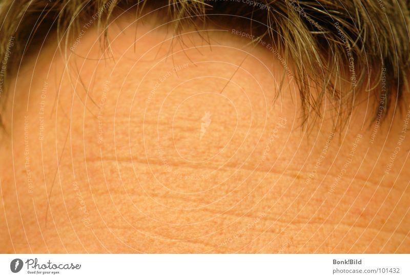 Denkerstirn Mann Sommer Denken braun Kommunizieren Konzentration Erfahrung Stirn Haarausfall