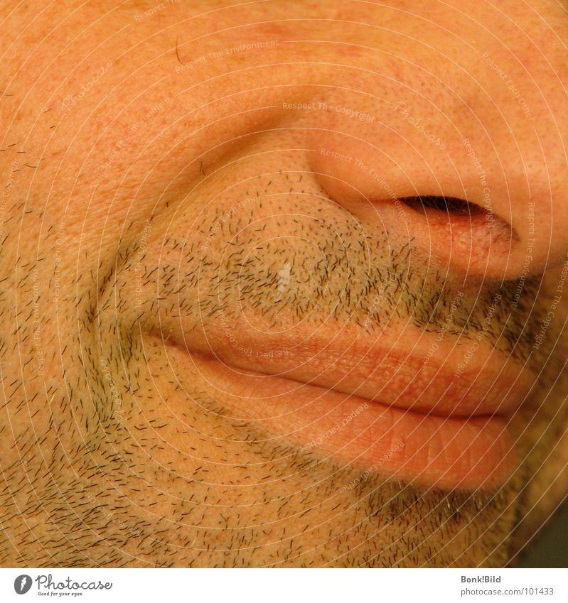 Dreitagebart Mann Freude Gesicht lachen grinsen Stoppel Bartstoppel Dreitagebart