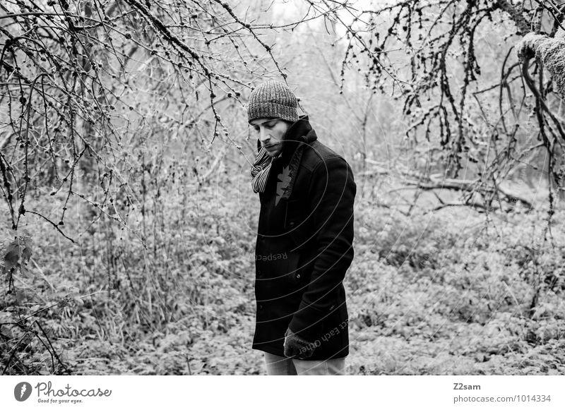 Im Zauberwald Natur Jugendliche Baum Junger Mann Einsamkeit Landschaft ruhig Winter Wald Erwachsene Umwelt Traurigkeit Herbst natürlich Stil Denken