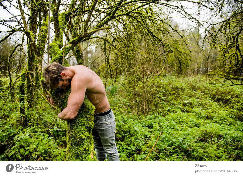 Naturverbunden Jugendliche grün Sommer Baum Erholung Landschaft Junger Mann ruhig Wald Erwachsene Umwelt Herbst natürlich Gesundheit Zusammensein