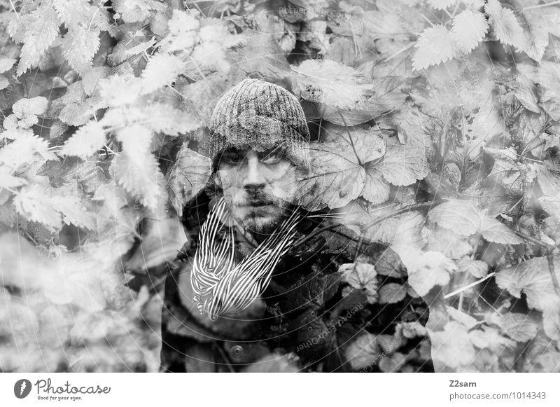 Undercover Natur Jugendliche Pflanze Baum Landschaft Junger Mann Wald Umwelt Erwachsene Herbst natürlich Stil maskulin elegant Sträucher Mütze
