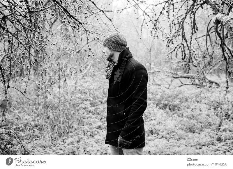 Im Zauberwald elegant Stil maskulin Junger Mann Jugendliche 30-45 Jahre Erwachsene Umwelt Natur Landschaft Herbst Winter schlechtes Wetter Baum Sträucher Wald